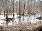 Dana Bradley Hunt-Photography-Legacy Land Team-Kentucky-Real Estate-Land-142