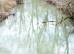 Dana Bradley Hunt-Photography-Legacy Land Team-Kentucky-Real Estate-Land-175