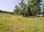 Willis Farm-KY-House-Farm-TImber-Hunting-Land for Sale-Legacy Land Team-Scott Meredith-Real Estate-167