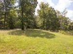 Willis Farm-KY-House-Farm-TImber-Hunting-Land for Sale-Legacy Land Team-Scott Meredith-Real Estate-247