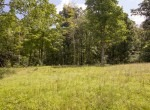 Willis Farm-KY-House-Farm-TImber-Hunting-Land for Sale-Legacy Land Team-Scott Meredith-Real Estate-248