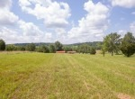 Willis Farm-KY-House-Farm-TImber-Hunting-Land for Sale-Legacy Land Team-Scott Meredith-Real Estate-264