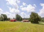 Willis Farm-KY-House-Farm-TImber-Hunting-Land for Sale-Legacy Land Team-Scott Meredith-Real Estate-267