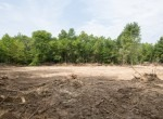 Legacy Land Team-Donaldson Creek 92 Acres-Land for Sale-18
