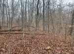 98 acre Christian 2